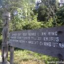 Suku dayak Wehea lindungi hutan