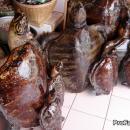 Stuffed sea turtle trade