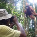 Ride for Orangutan