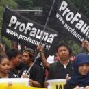 ProFauna kampanye di Surabaya