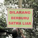 Supporter ProFauna Memasang Papan Pelarangan Perburuan Satwa di Situbondo